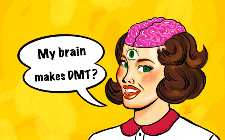 Does the human brain make DMT?