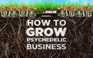 Meet Delic Presents: How To Grow Psychedelics Businesses