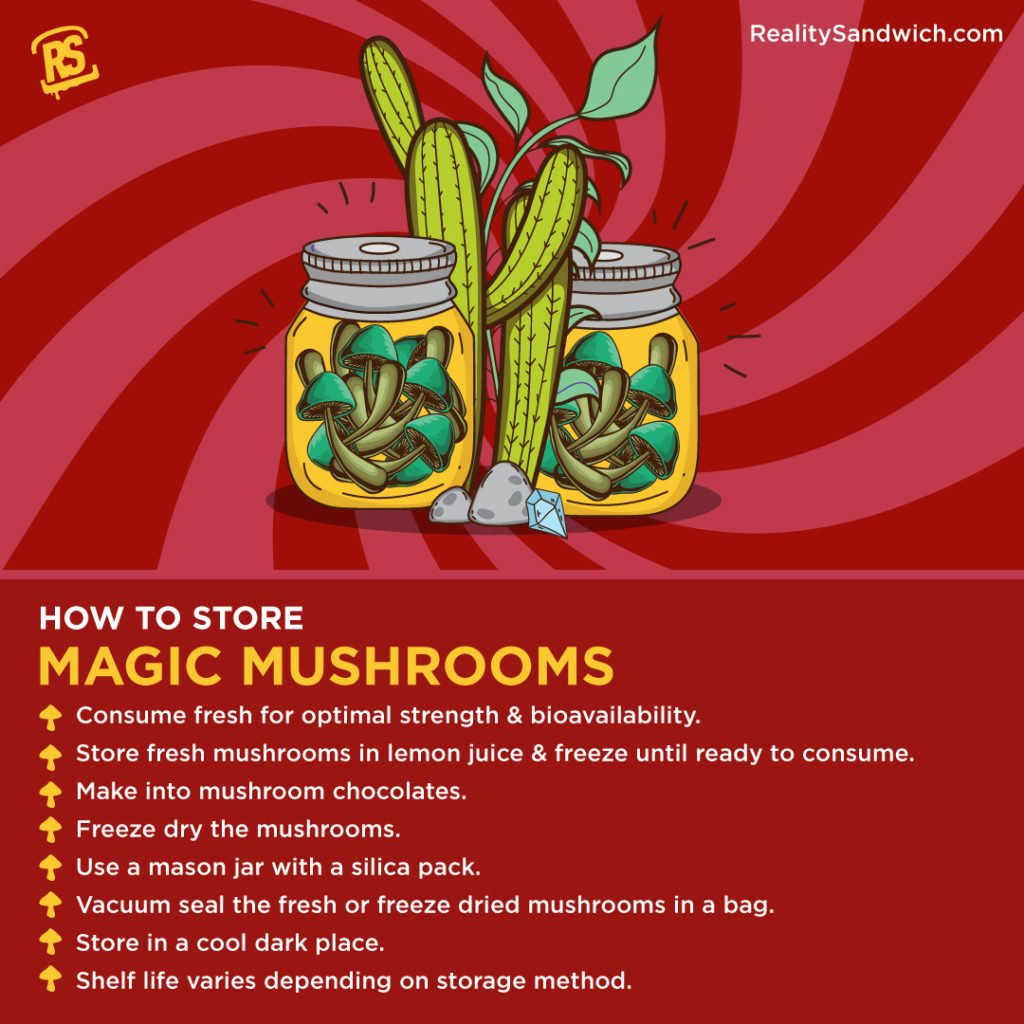 how-to-store-magic-mushrooms-infographic